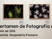 certamenfotociencia2016